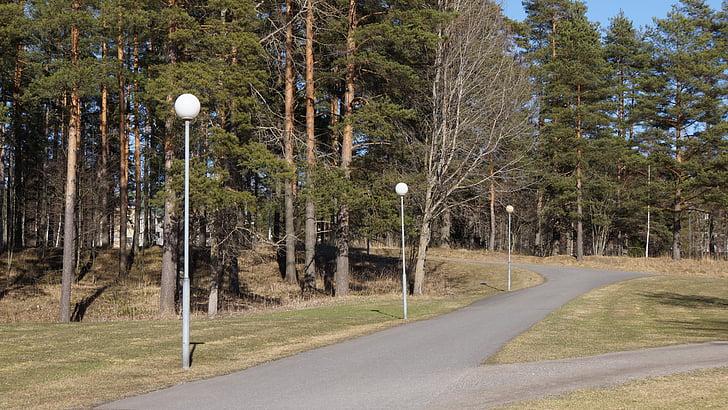 finlandesa, primavera, paviment, enllumenat, comiat, elecció