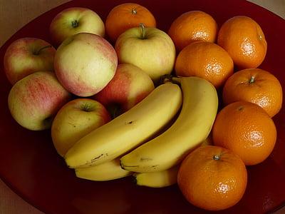 puu, puu kaussi, puuviljad, Apple, banaanid, tangeriinid, terve