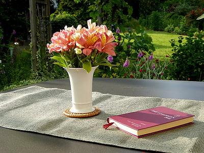 Váza Flower, kniha, oranžová květina, bílá, kytice, Zátiší, pozadí
