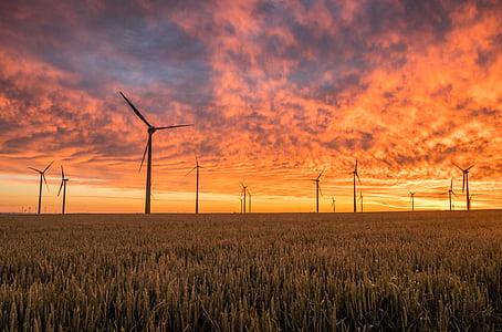 paesaggio, Foto, Vento, turbine, pomeriggio, natura, Eco