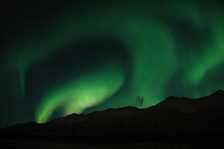 aurora boreal, llums del nord, cel, nit, paisatge, natura, fosc