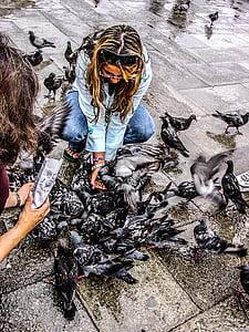 coloms, Venècia, Venezia, ocells, alimentació, Turisme, Itàlia