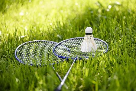 babington, game lounge, active holidays, adopt a garden, summer, dart, lawn
