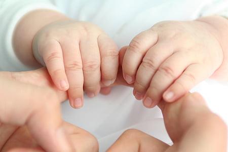 bebé, amor, mano de bebé, parte del cuerpo humano, mano humana, estar juntos, infancia