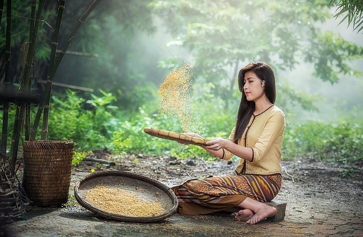 ryža, prasnice, dospelý, Staroveké, Ázia, prácu, krásna