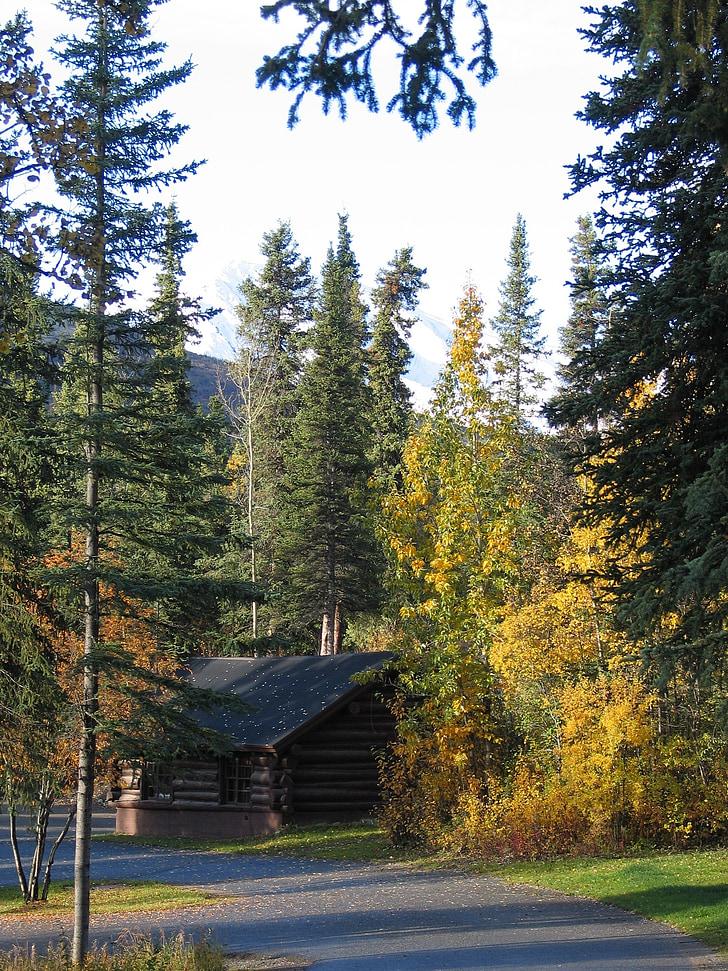 Parc Nacional de Denali, Alaska, paisatge, cel, núvols, natura, fora