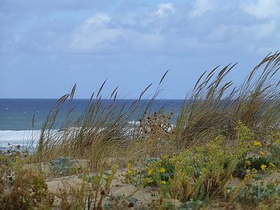 Atlàntic, Costa, paisatge, França, costa atlàntica, Mar, Bretanya