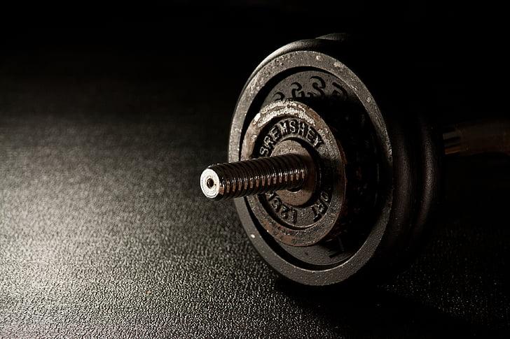 gimnàs, pes, Halter, gimnàs, gimnàs, aixecament de peses, entrenament de força