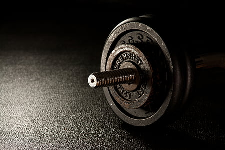 thể dục, trọng lượng, Dumbbell, studio tập thể dục, Trung tâm thể dục, trọng lượng nâng, sức mạnh đào tạo