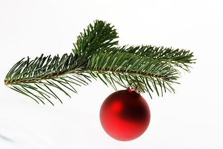 fir, nordmann fir, christmas tree, christmas, ball, deco, christmas decorations