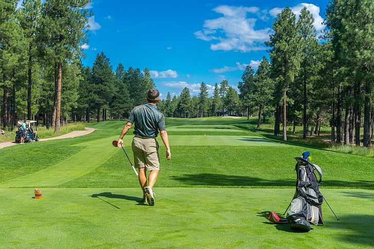 golfer, golf, course, golfing, player, male, golf course