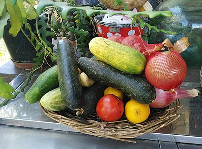 cogombre, tomàquet, carbassó, Sa, verdures, local, Bio