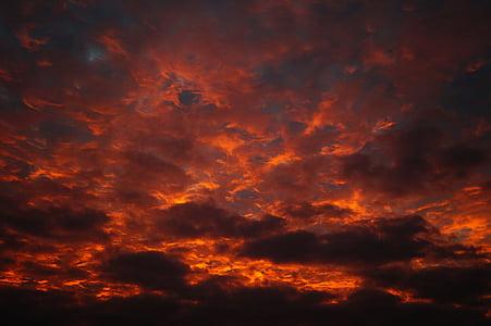 sunlight, sunbeam, vibrant, cloud, storm, view, day