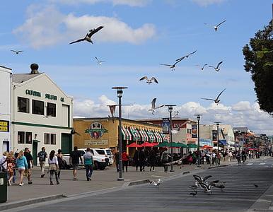Monterey, Kalifornien, Seascape, turism, strandpromenaden, promenad, Seaside