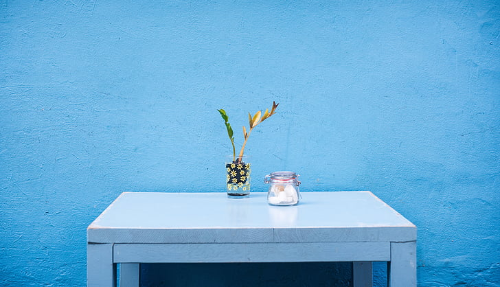blau, contenidor, planta decorativa, vidre, recipient de vidre, taula, taula de fusta