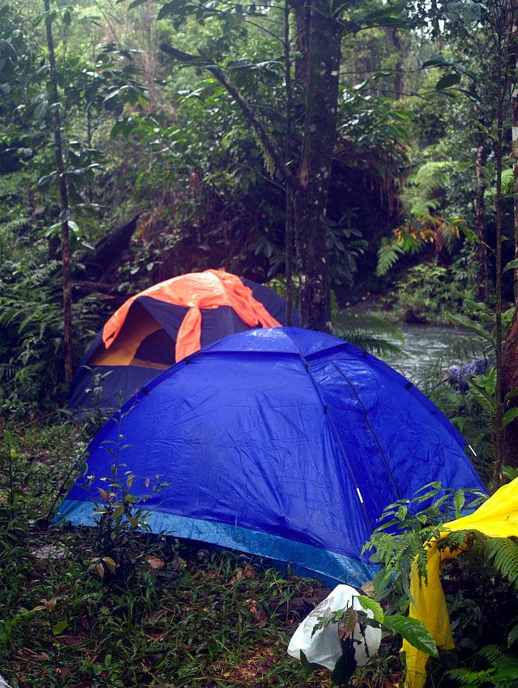 Càmping, a l'exterior, tenda, campament, Selva, desert, aventura