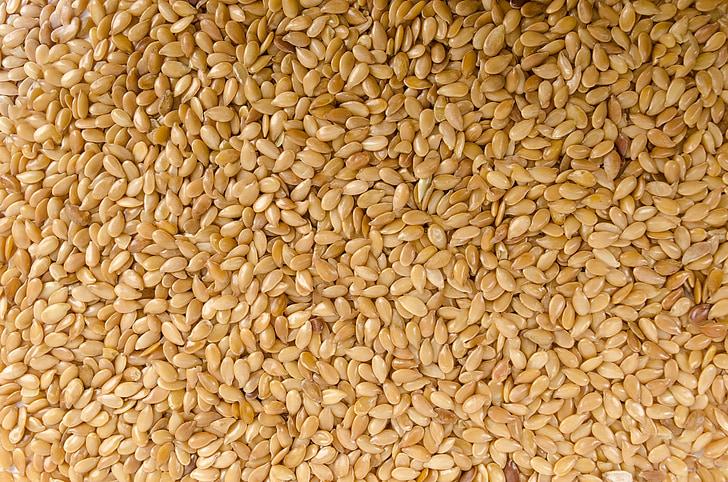tuvplāns, graudu, neviens, fiziska, garšvielas, balta, bioloģiskās lauksaimniecības
