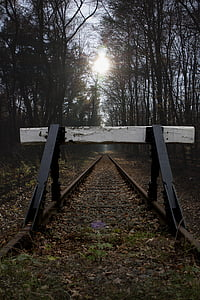 buffer stop, siding, glade, forest, trees, forest path, atmosphere