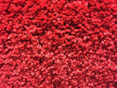 Dywan, włókna, Dywany, tekstury, tekstylne, czerwony, tkanki