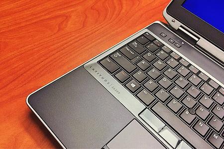 computer, laptop, office, work