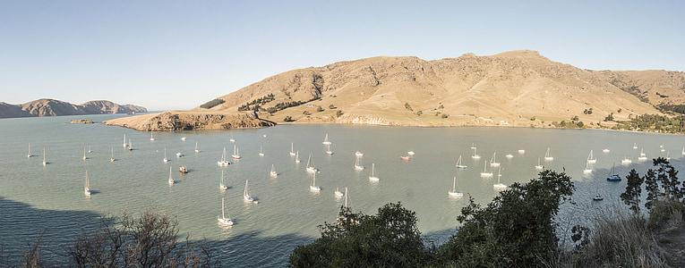 Lyttelton, Uus-Meremaa, Sea, Bay, Vaikse ookeani, rahulik, vee, päike