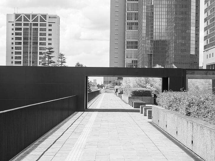 Черно и бяло, бил, сграда, пейзаж, изглед към града