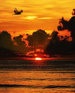 posta de sol, Mar, núvols, oceà, l'aigua, sol, cel