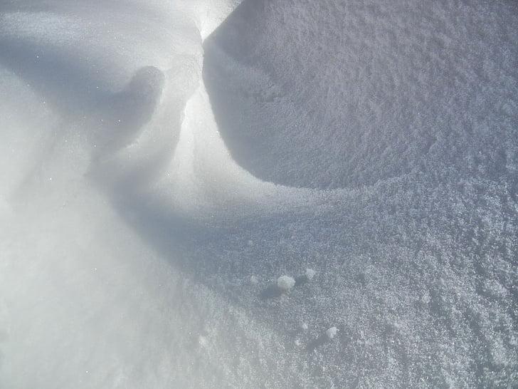värske lumme, elurõõm, pöörleb