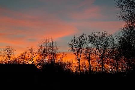 Захід сонця, Вогняний, післясвічення, вечірнє небо, хмари, небо, дерева