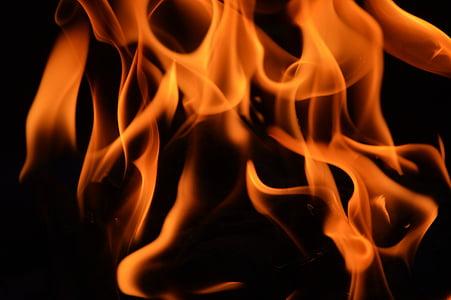 foc, flama, calor, cremar, calenta, foc de fusta, textura
