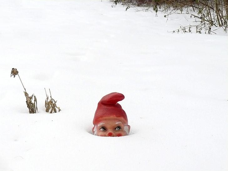 garden gnome, winter, snow, dwarf, white, cold, hidden