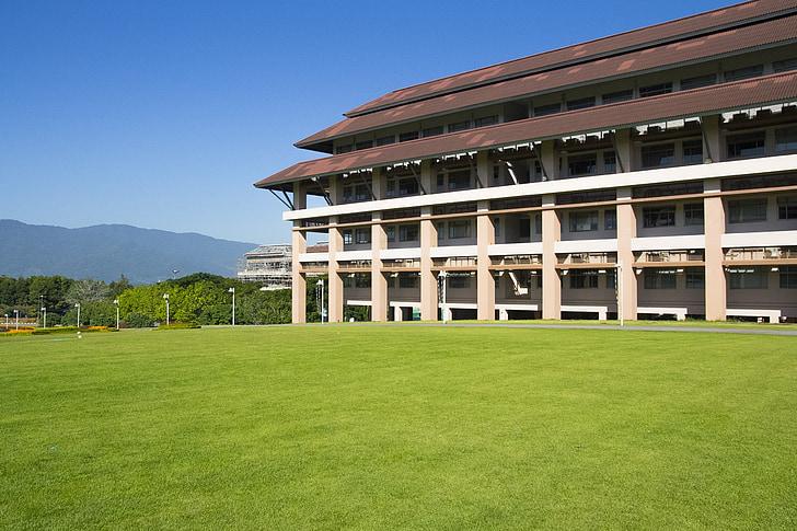 building, lawn, grass, architecture, construction, urban