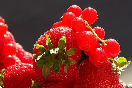 fruita, vermell, fruites, l'estiu, maduixa, baies