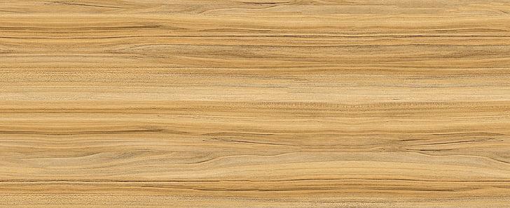 arbres, fusta, fusta de color groc, roure, sàndal, teca, vetes de la fusta