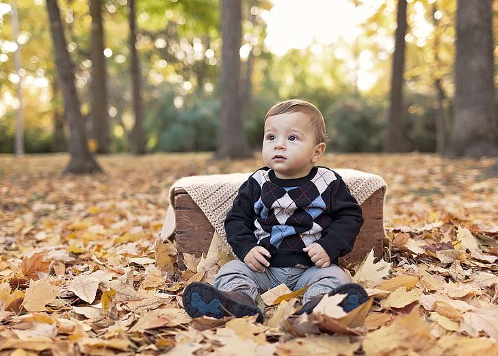 бебе, Момче, дете, хлапе, очарователни, малко дете, момченце