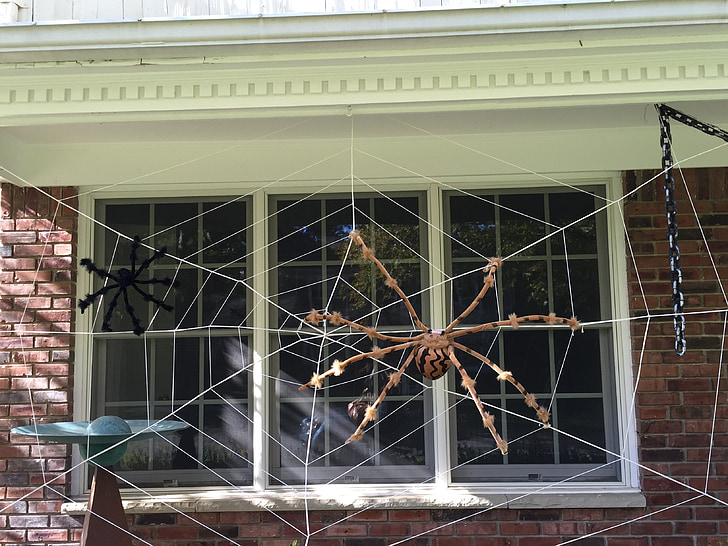 halloween, decor, outside, house exterior, web, spider, decoration