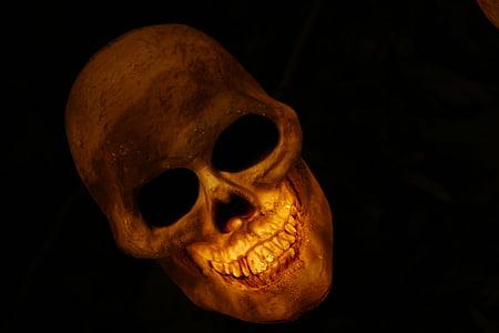 skull, skull and crossbones, skeleton, bone, smile, evil, diabolical