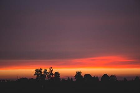 bakgrundsbelyst, mörka, Dawn, skymning, Orange himlen, silhuetter, Sky