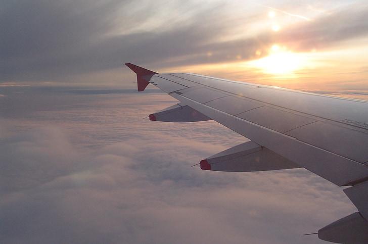 siipi, ilma-aluksen, taivas, pilvet, lentää, lentokoneen siipi, lento