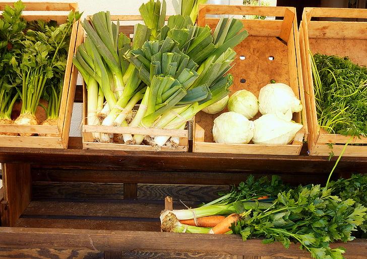 verdures, API, Kohl, verds de sopa, kohlrabi, julivert