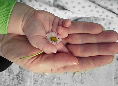 händer, Kärlek, hand, evighet, fred, Evig kärlek, tillsammans