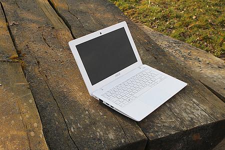 laptop, notebook, work, independent