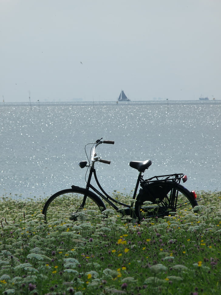 bike, sea, bicycle, summer, vacation, sky, flowers