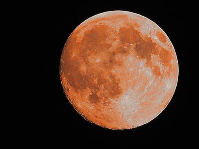 súper lluna, Lluna, Lluna plena, l'astronomia, superfície de la lluna, planeta - espai, nit