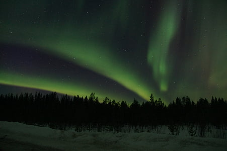 nordlys, Sverige, Lapland, stjerne - rummet, nat, aurora borealis, astronomi
