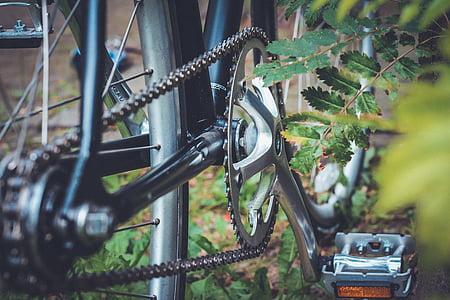 bicikala, bicikl, Lanac, željezo, lišće, za prodaju, priroda