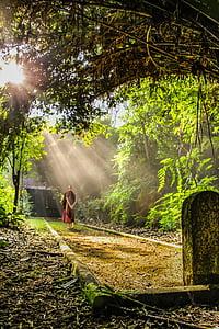 theravada budismi, kõndimise Meditatsioon, munk, budism, Buda, Kultuur, Meditatsioon