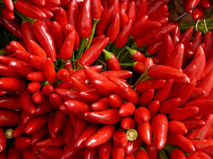 čili, oštar, Crveni, jesti, ljute papričice, pod, mahuna