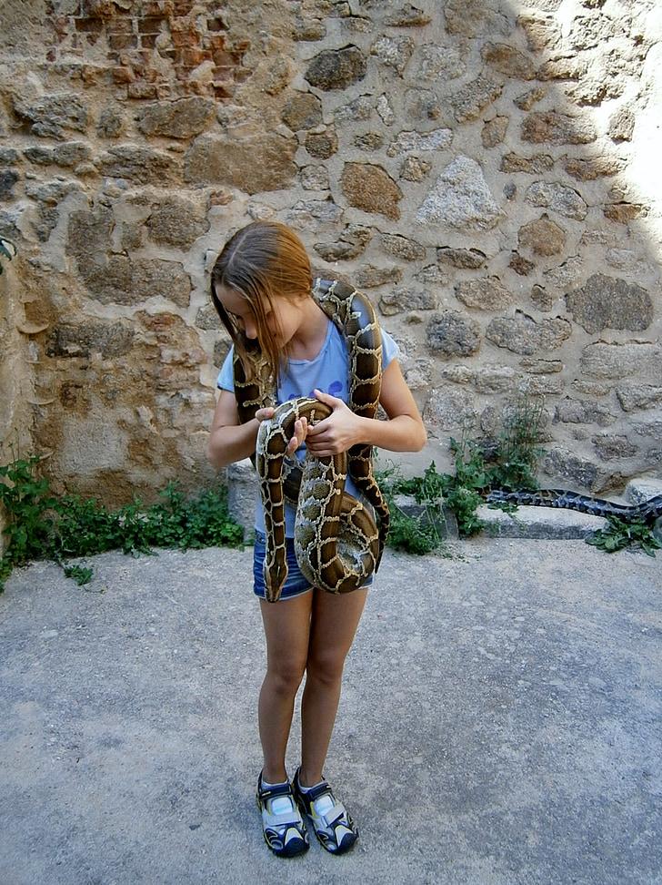 girl, snake, girl with snake, serpentine, the brave, the zoological garden, deer