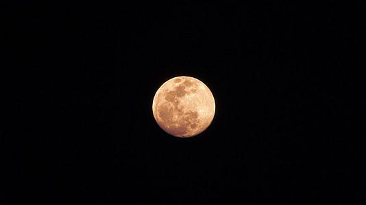 llum de lluna, Lluna, cel, nit, lunar, l'astronomia, superfície de la lluna